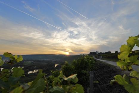 Fränkisches Weinland - Maria im Weingarten Volkach