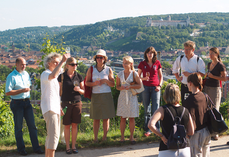 Guided tour Steinweinpfad (wine trail)