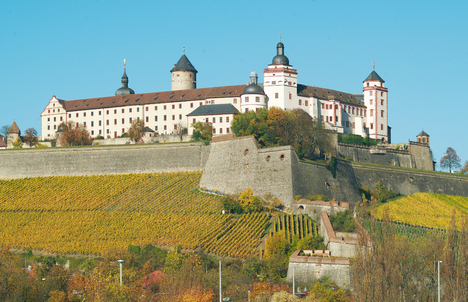 Fortress Marienberg and vineyards (autumn mood)
