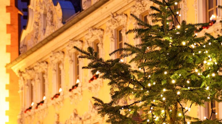 Weihnachtsbaum am Falkenhaus