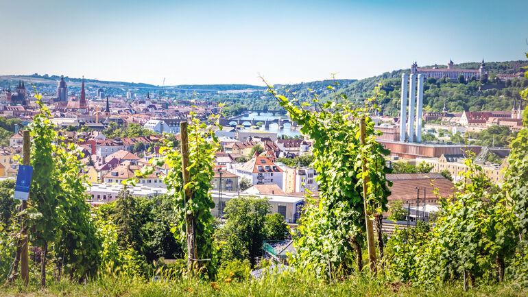 Blick in den Würzburger Talkessel