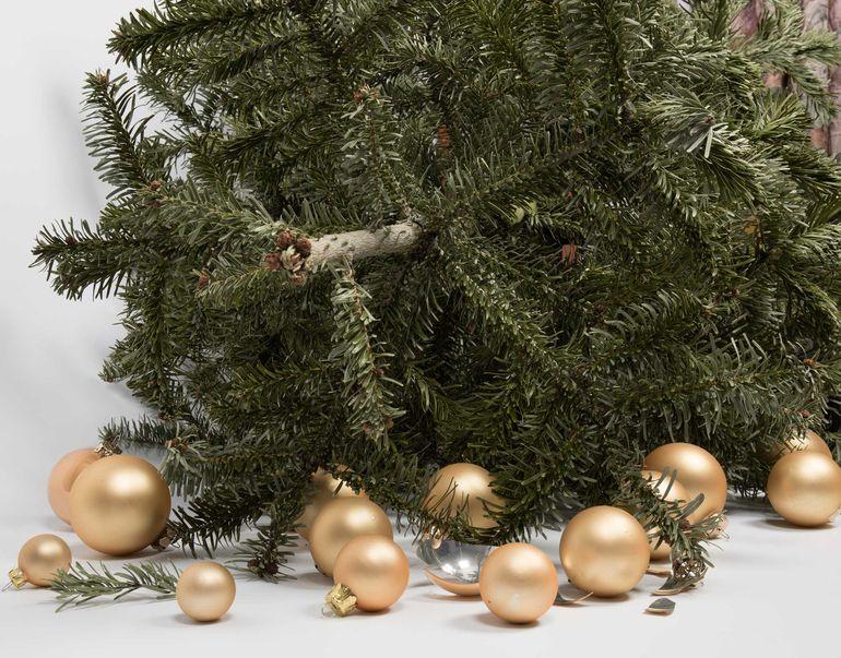 Foto: Weihnachtsbaum