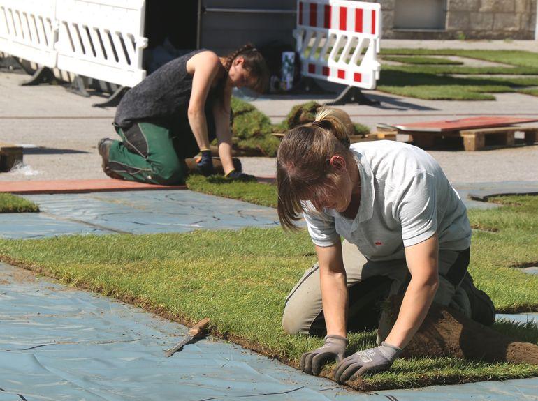 Die Mitarbeiter des Gartenamtes verlegen den Rollrasen vor dem Kulturspeicher