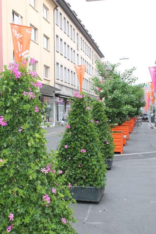Würzburg blüht auf - 70 Blumenpyramiden in der Innenstadt
