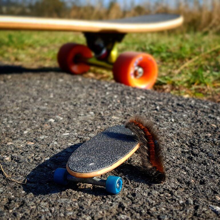Fotowettbewerb klimafreundliche Mobilität-1 Longboarden mit Freunden