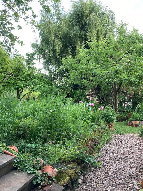 Klimagerecht gärtnern 0061